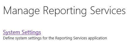 reporting-services-system-s